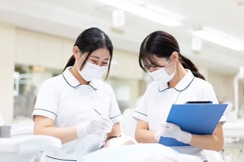 衛生 士 資格 歯科